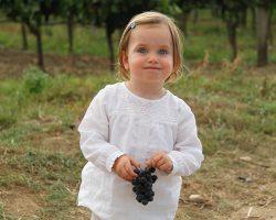 Marie Stadler im Weingarten
